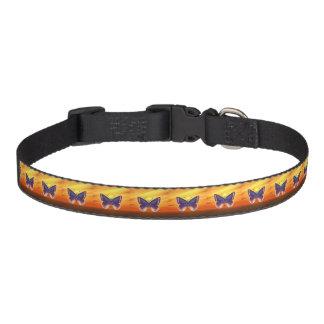 Heller Schmetterling Haustierhalsband