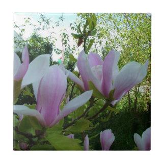 hellpurpurne Magnolien-Blumen des Frühlinges Kleine Quadratische Fliese