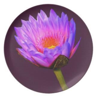 Hellpurpurne Wasser-Lilie Melaminteller
