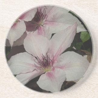 Hellrosa Clematis-Blüte Untersetzer