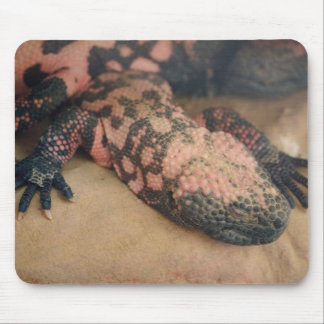 Heloderma suspectum mousepads