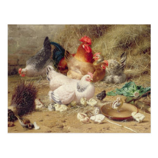 Hennen, die mit ihren Hühnern roosting sind Postkarte