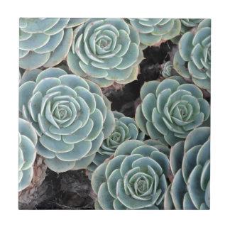 Hennen und Küken-Pflanze Keramikfliese