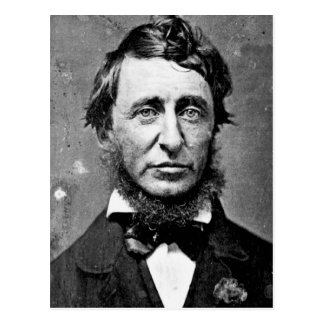 Henry David Thoreau Postkarte