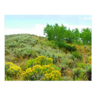 Herauf den Hügel großartiges teton Nationalpark Postkarte