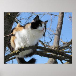 herauf einen Baum durch djoneill Poster
