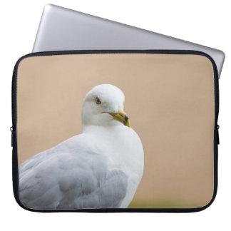 Heraus schauen laptop sleeve