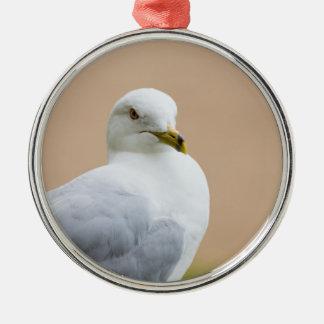 Heraus schauen rundes silberfarbenes ornament