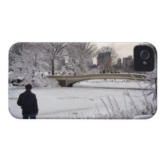 Heraus schauen über einem gefrorenen Teich iPhone 4 Hüllen