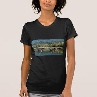 Herausgestellte Baum-Stümpfe auf See T-Shirt