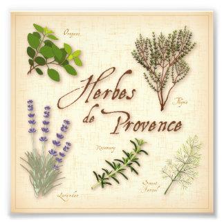 Herbes De Provence, Rezept, Lavendel, Thymian, Kunstphotos