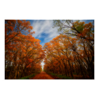Herbst-Abend Poster