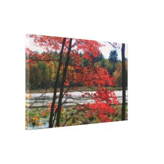 Herbst-abgelegene Sumpf-Natur Leinwanddruck