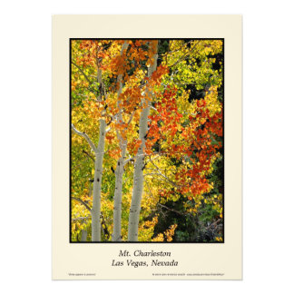 "Herbst Aspen 20"" Mt. Charleston Nanovolt"" Plakat Fotodruck"