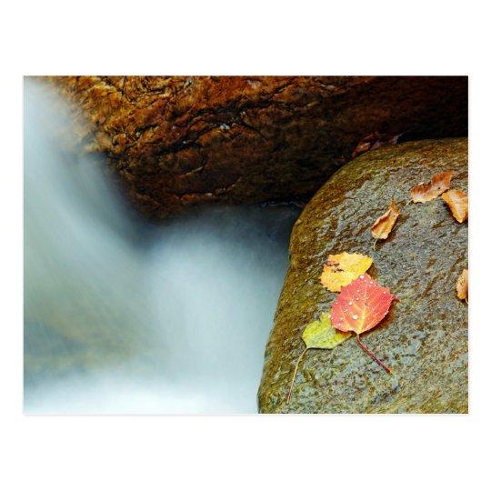Herbst Bach Postkarte