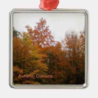 Herbst-Bäume für Ihren Familien-Weihnachtsbaum Silbernes Ornament