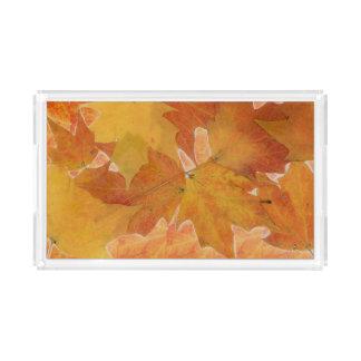 Herbst-Blatt-Acryl-Behälter Acryl Tablett
