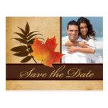 Herbst-Blätter auf gealtertem PapierFoto Save the  Postkarten
