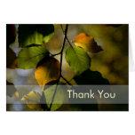 Herbst-Blätter • Danke zu kardieren Grußkarte
