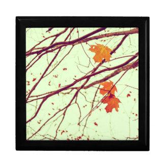 Herbst-Blätter Erinnerungskiste