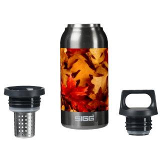 Herbst-Blätter - Fall-Farbe Isolierte Flasche