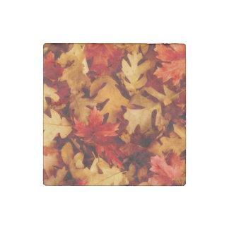 Herbst-Blätter - Fall-Farbe Stein-Magnet
