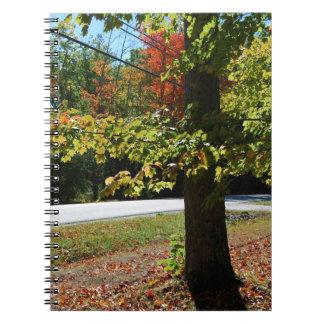Herbst-Blätter in Maine Notizblock
