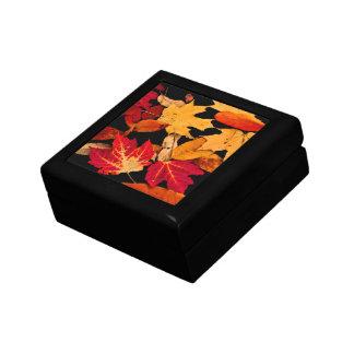 Herbst-Blätter in rotem orange gelbem Brown Erinnerungskiste