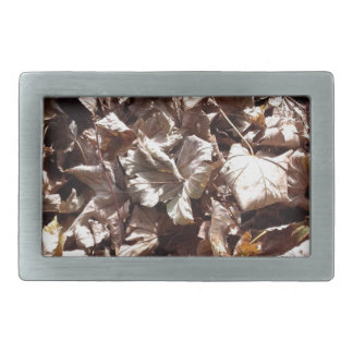Herbst-Blätter Rechteckige Gürtelschnalle