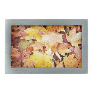 Herbst-Blätter Rechteckige Gürtelschnallen