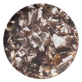 Herbst-Blätter Teller