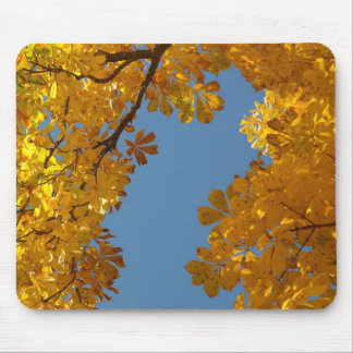 Herbst-fallender Blätter-Kastanien-Baum Mousepad