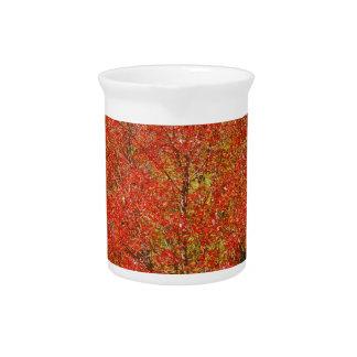 Herbst-Farbe auf Kleidung und Geschenken Getränke Pitcher