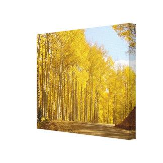 Herbst-Farben Leinwanddruck