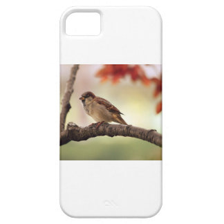 Herbst-Fink Hülle Fürs iPhone 5