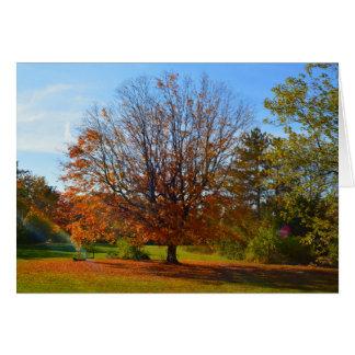 Herbst-Glanz Karte
