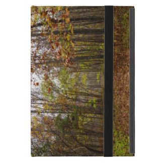 Herbst-Glück Etui Fürs iPad Mini