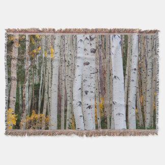 Herbst im Aspens Decke