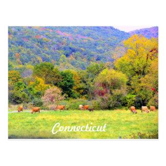 Herbst in CT Postkarte