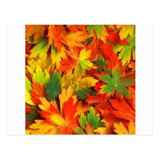 Herbst-Kaleidoskop von Postkarte