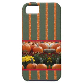 Herbst Kürbis Wiese orange grün Streifen iPhone 5 Hülle