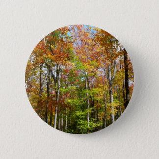 Herbst-Landschaftsphotographie des Fall-Waldii Runder Button 5,1 Cm