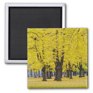 Herbst-Magnet Quadratischer Magnet