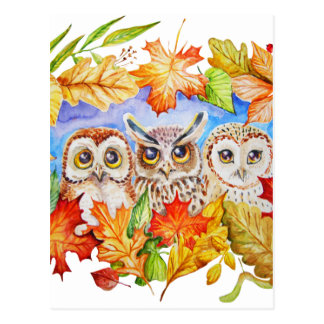 Herbst mit drei Eulen Postkarten