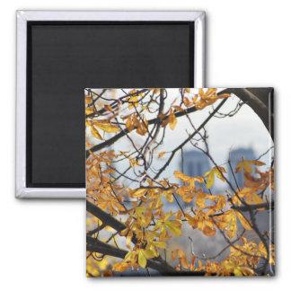 Herbst Paris Notre Dame Quadratischer Magnet