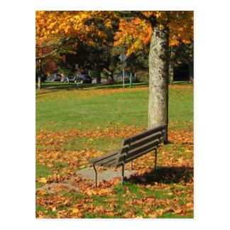 Herbst-Park-Bank-Postkarte Postkarte
