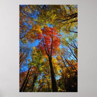 Herbst-Plakat Poster