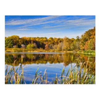 Herbst-Reflexions-Postkarte Postkarte