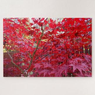 Herbst-Rotahorn-Baum Puzzle