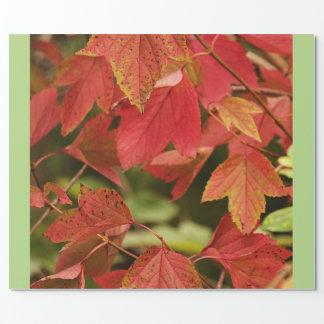 Herbst-Ruhm-Packpapier Geschenkpapier